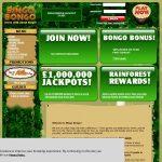 Bingobongo Slots Bonus