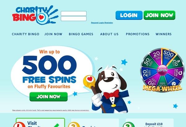 Charity Bingo Offer